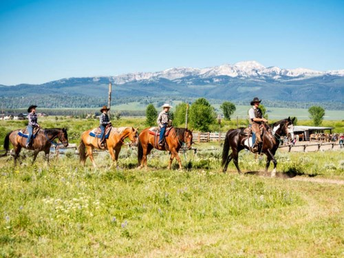 Learn to horse ride in Montana, USA